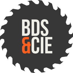 Logo Brain de Scie & Cie